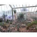 Kew Gardens Visit