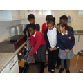 Putting our flapjacks into the oven carefully.