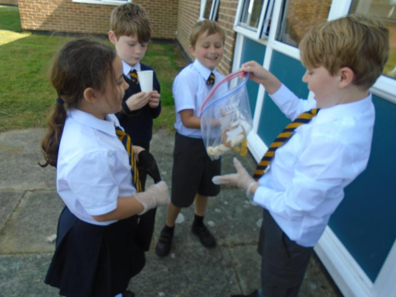 4T children modelling how the digestive system works.