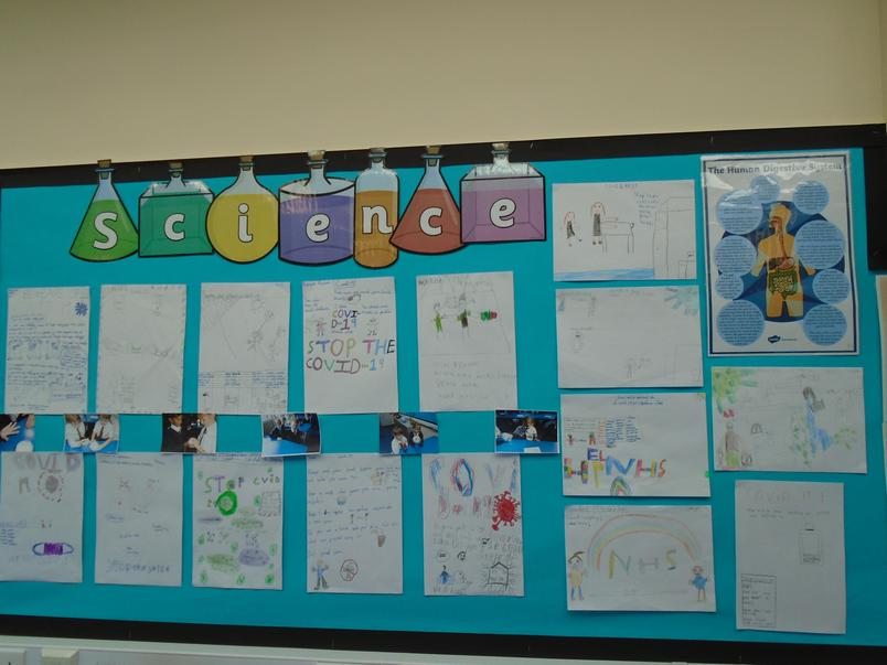 4T's Science display