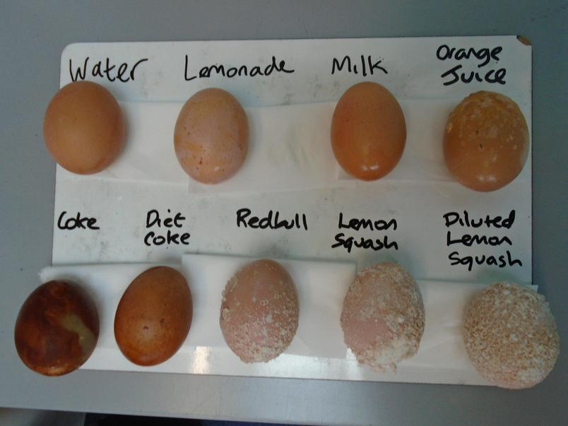 This is what happened to each egg. The egg shell represents the enamel on our teeth.