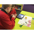 Young scientists- dissecting plants