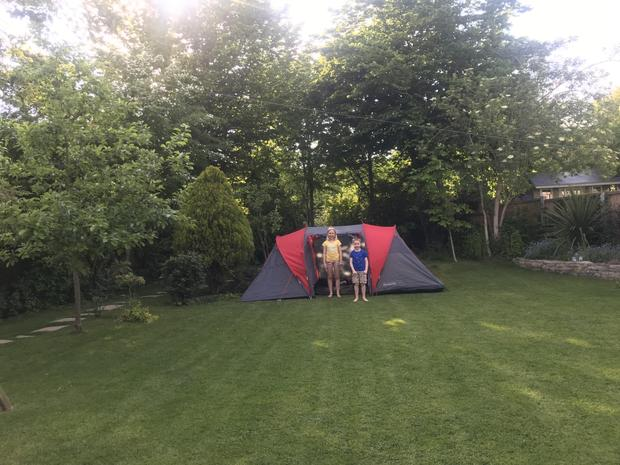 Polly has been busy - camping in the garden...