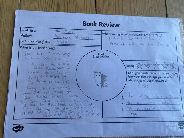 Anya's review of War Horse by Michael Morpurgo