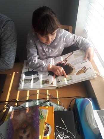 Hania researching animals