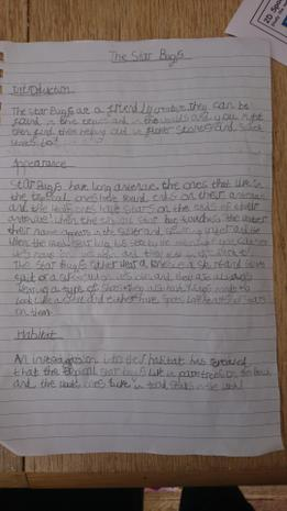 Izzy's non-chronological report on her creation...