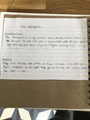 Fran's report on her animal creation...
