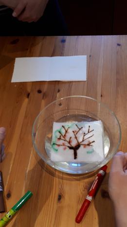 Hania doing some scienc-y art!