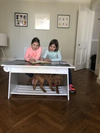 Francesca working with her sister and puppy Magda!