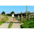 A lovely sunny walk
