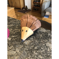 A great Hedgehog made by James
