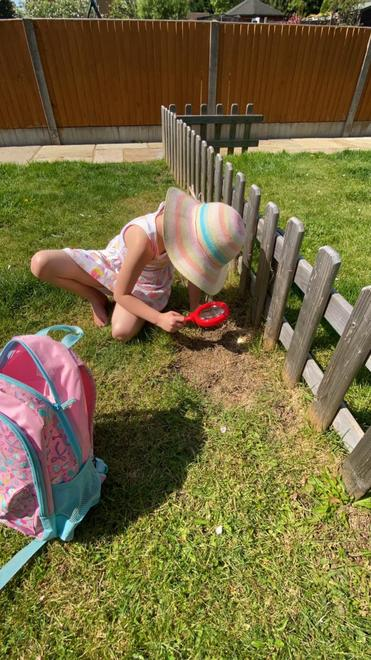 Looking for clues !