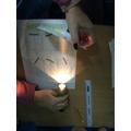Light investigation