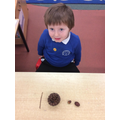 Maths time - repeating patterns