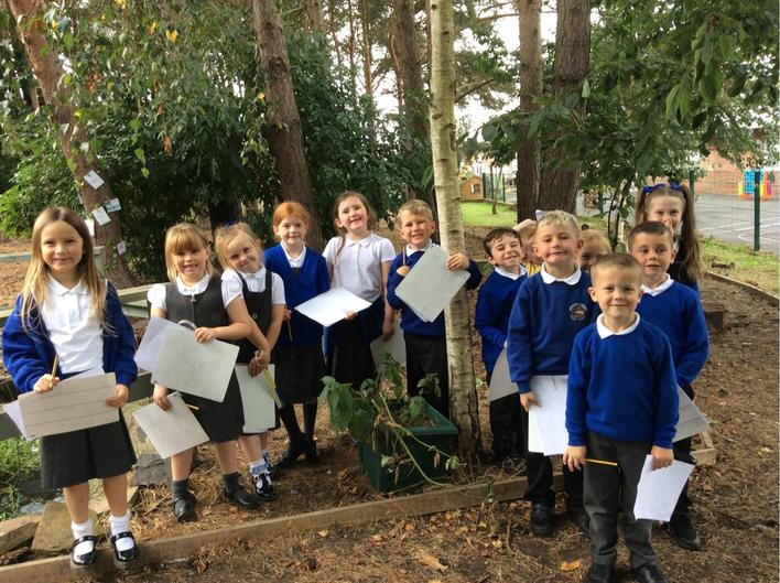 We spotted a birch tree in our woodland area