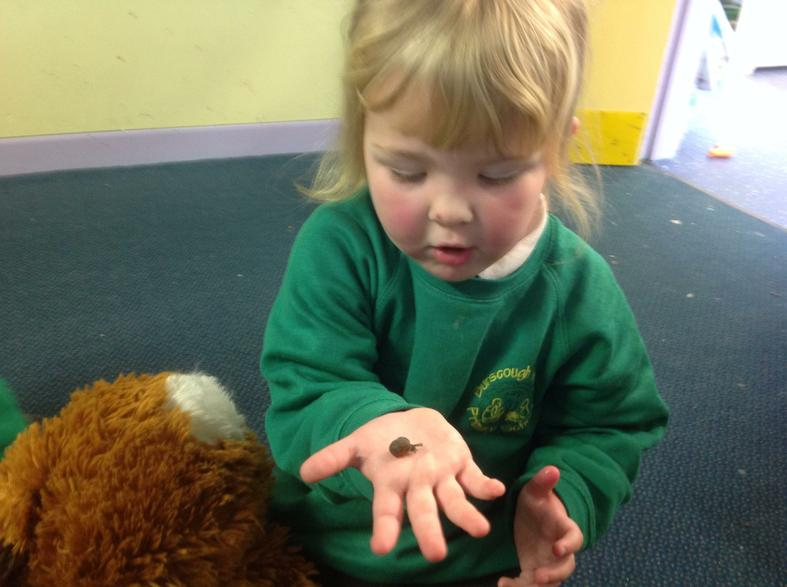 Sophia loved investigating our snails!