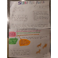 Lyra's Stone Age Fact Poster - Year 3