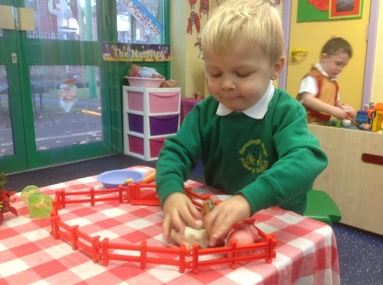 Building a pen and sorting animals