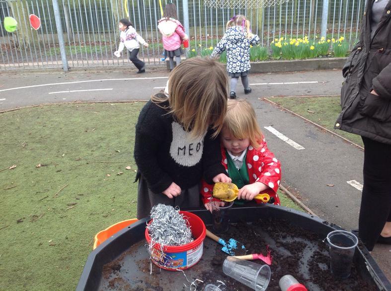 Planting magic beans!