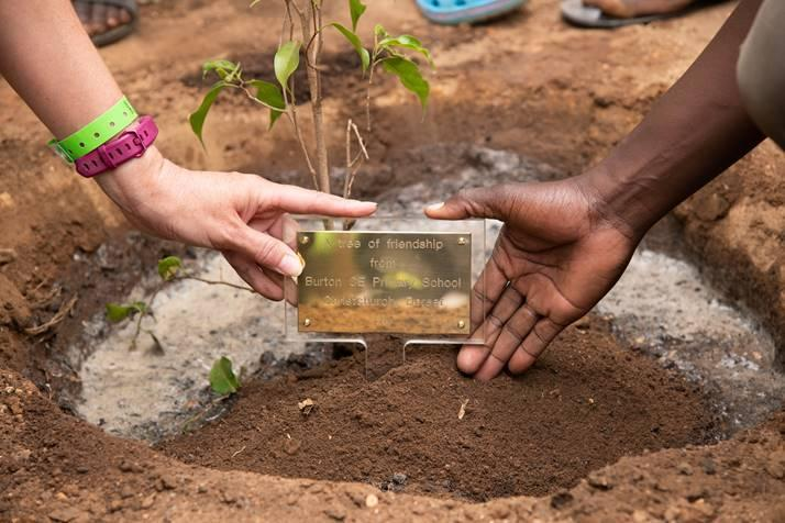 The friendship plaque - we will plant a tree too