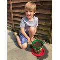 Planting sunflower2.JPG