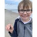 Ollie found a shark tooth.jpeg