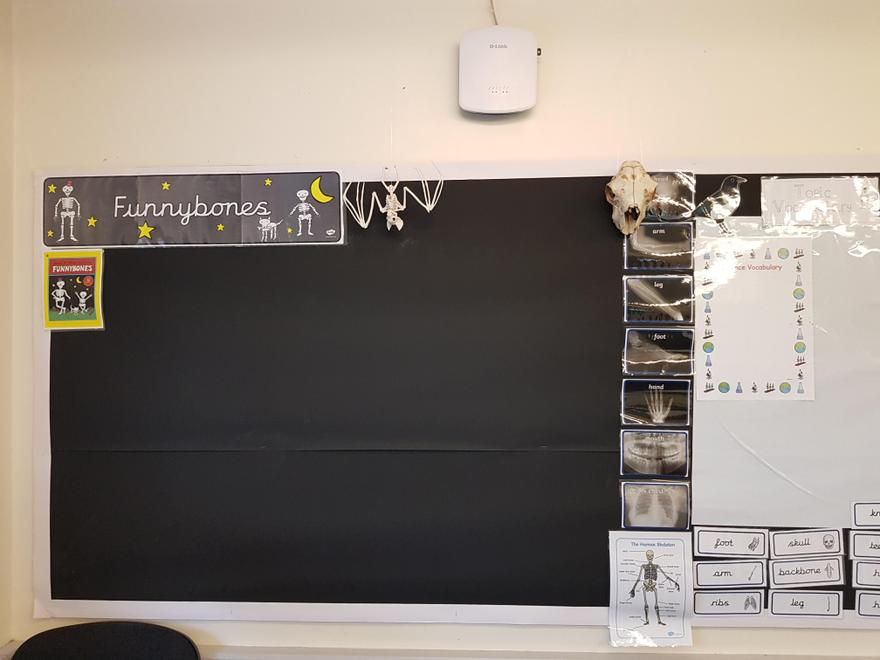 This is our 'Funny Bones' topic display.  Can you spot the skeleton of a bat?