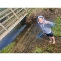 Morgan pond dipping.jpg