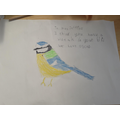 Mrs Jefferies Bird.jpg