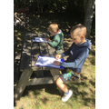 Observational drawing in the wildlife area