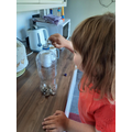 Eva made a musical bottle with pebbles