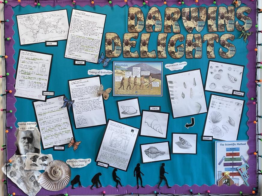 Darwin's Delights Topic Display