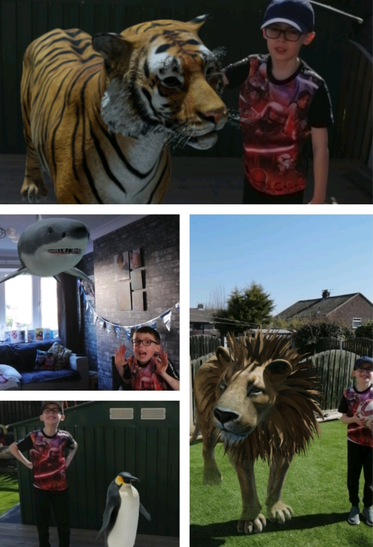 Wow!  Did a tiger come for tea? Amazing!