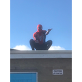 Even Spiderman made an appearance but clearly can't read the signs!