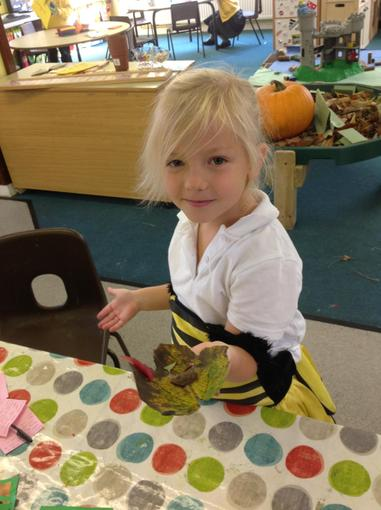 Using leaves to make pictures