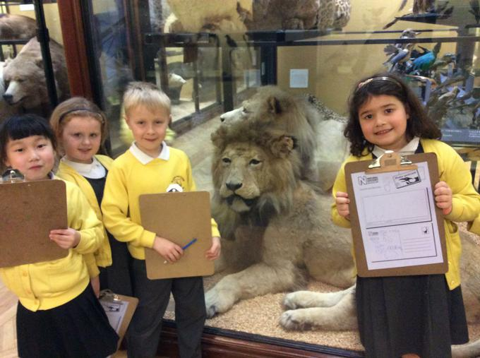 Exciting animals at the Natural History Museum