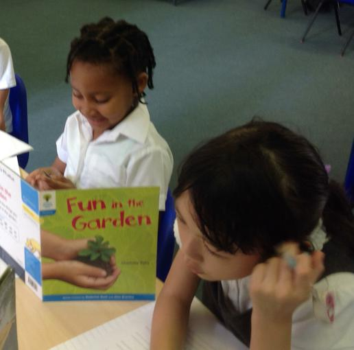 Finding out about different insects in literacy