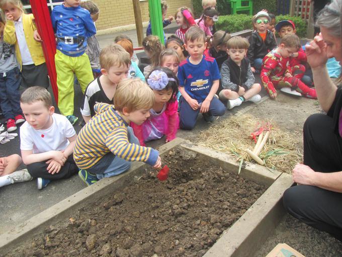 Covering the potato in soil