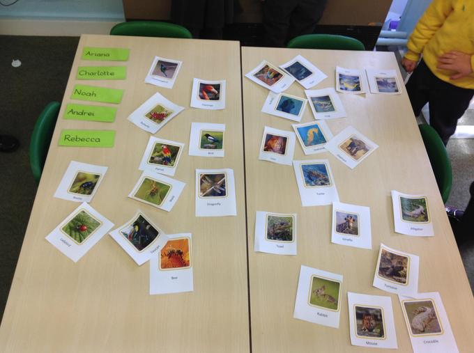 Sorting animals into two groups