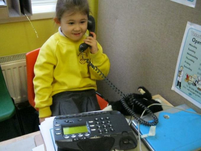 Telephone call to the Vets