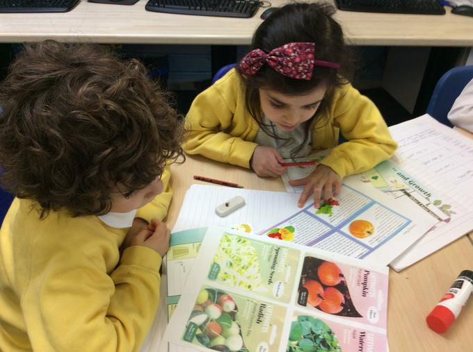 What information can we find on seed packets?