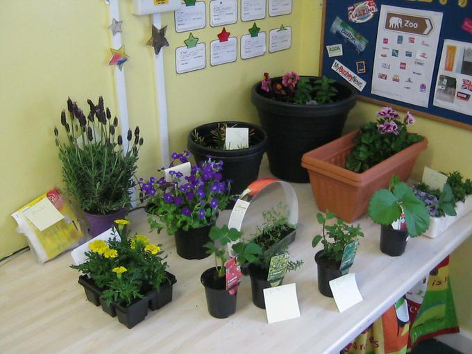 our new Garden Centre!