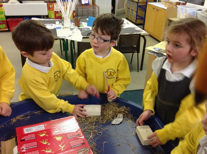 We worked to find some fossils