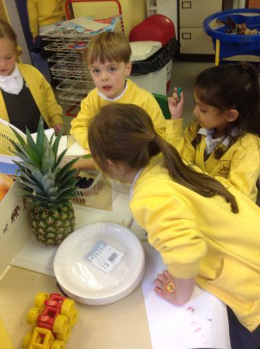Examining fruits mentioned in Handa's Surprise