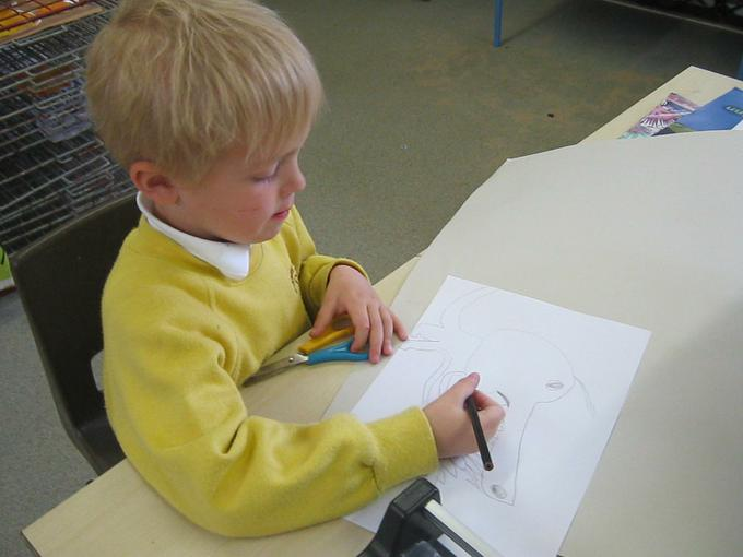 writing about sea creatures