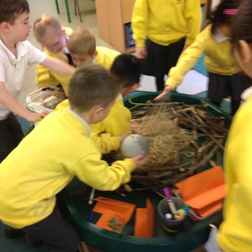 Making a nest for the egg