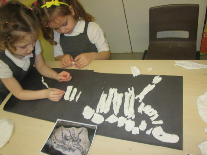 Making pictures of fossils