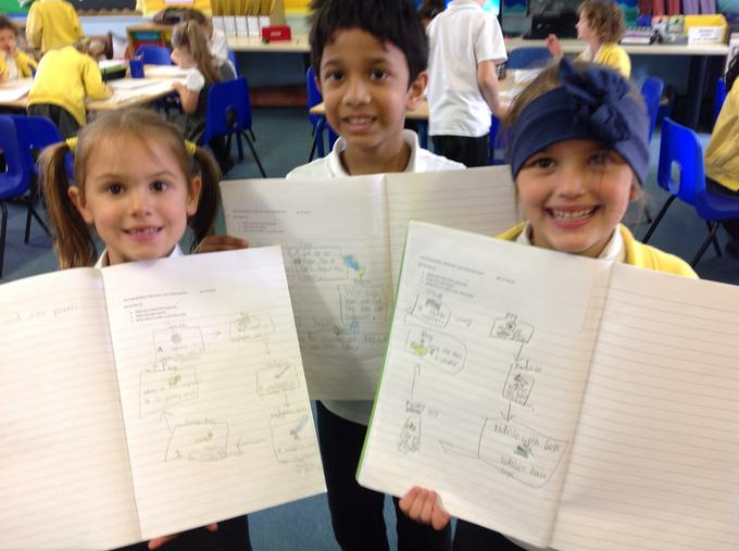 Look at our literacy flowcharts!