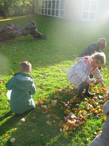 Collecting leaves for our creative area