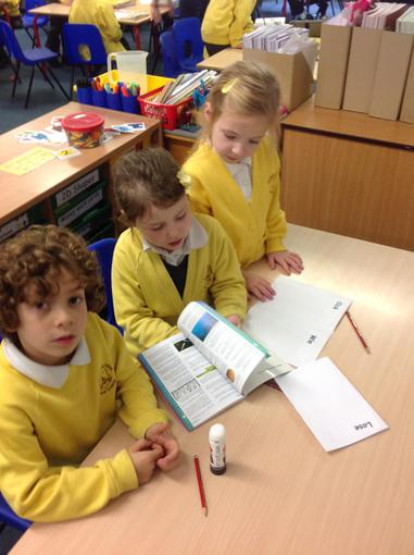 Literacy - Ordering keywords alphabetically